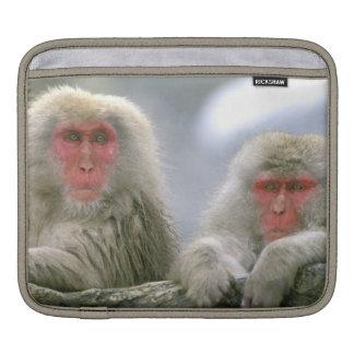 Snow Monkey Couple, Japanese Macaque, iPad Sleeve