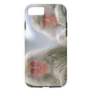 Snow Monkey Couple, Japanese Macaque, iPhone 8/7 Case