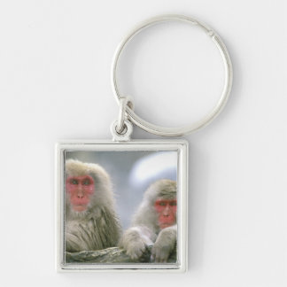Snow Monkey Couple, Japanese Macaque, Keychain