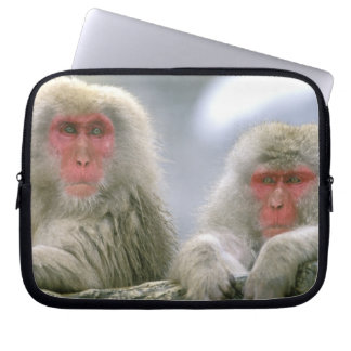 Snow Monkey Couple, Japanese Macaque, Laptop Sleeve