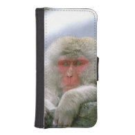 Snow Monkey Couple, Japanese Macaque, Phone Wallets