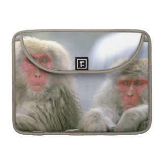 Snow Monkey Couple, Japanese Macaque, Sleeve For MacBooks