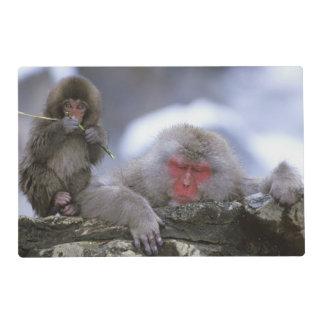 Snow Monkey Mother & Child, Jigokudani, Nagano, Placemat