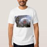 Snow Monkey Mother & Child, Jigokudani, Nagano, T-shirt