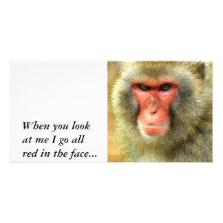 Snow Monkey, Photo Card