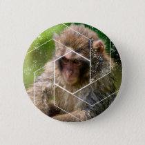 Snow Monkey Pinback Button