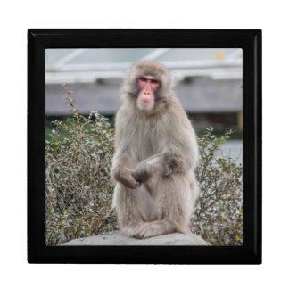 Snow Monkey Wildlife Photo Keepsake Boxes