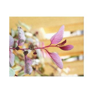 snow moutain plant pink purple against wood.jpg canvas print
