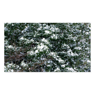 Snow On A Holly Tree Business Card