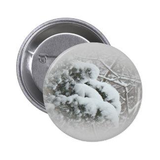 Snow on Arbor Vitae Pinback Button