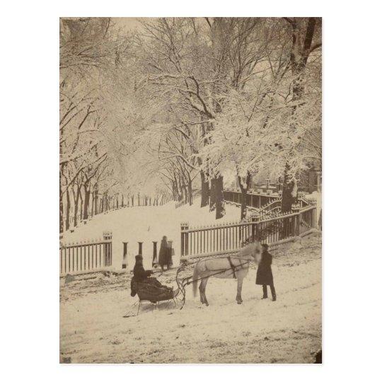 Snow on Boston Common Postcard