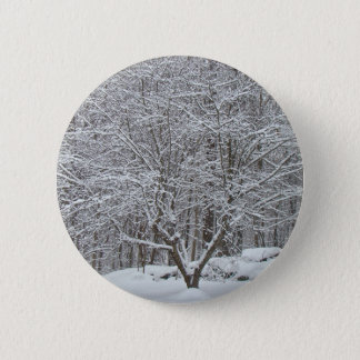 Snow on Dogwood Tree Quote Denis Waitley Pinback Button
