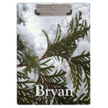 Snow on Evergreen Branches Winter Nature Photo Clipboard