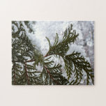 Snow on Evergreen Branches Winter Nature Photo Jigsaw Puzzle