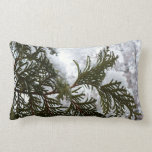 Snow on Evergreen Branches Winter Nature Photo Lumbar Pillow