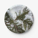 Snow on Evergreen Branches Winter Nature Photo Paper Plate