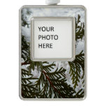 Snow on Evergreen Branches Winter Nature Photo Silver Plated Framed Ornament