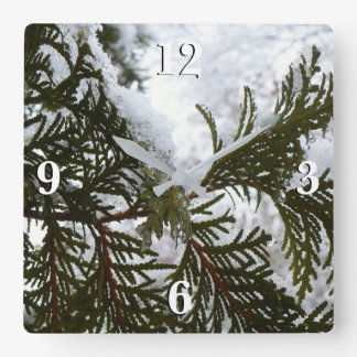 Snow on Evergreen Branches Winter Nature Photo Square Wall Clock