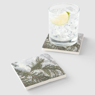 Snow on Evergreen Branches Winter Nature Photo Stone Coaster