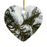 Snow on Evergreen Branches Winter Ornament