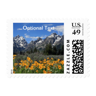 Snow on Grand Teton National Park in Spring Postage