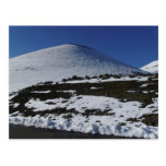 Snow on Mauna Kea Postcard