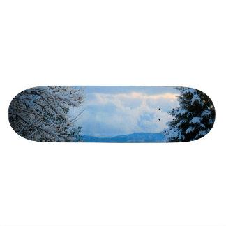 Snow on Pine Trees in Colorado Rocky Mountains Skateboard