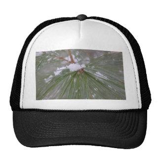 Snow on the Pine Needles Trucker Hat