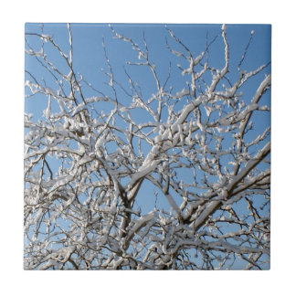 Snow on Tree Tiles