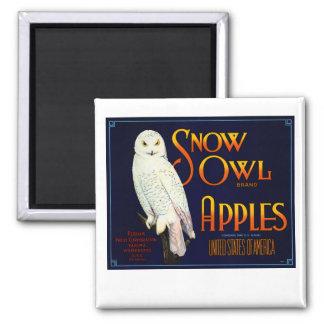 Snow Owl Apples Refrigerator Magnet