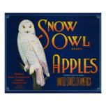 Snow Owl Apples Vintage Crate Label Poster