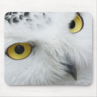 Snow Owl Eyes Mouse Pad