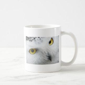 Snow Owl Eyes Mugs