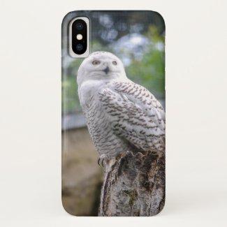 Snow owl iPhone x case