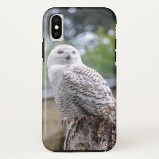 Snow owl... iPhone x case