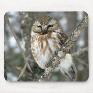 Snow Owl Mouse Pad
