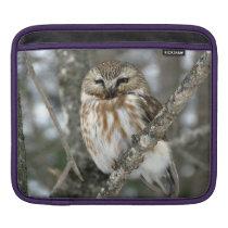 Snow Owl sleve Sleeve For iPads