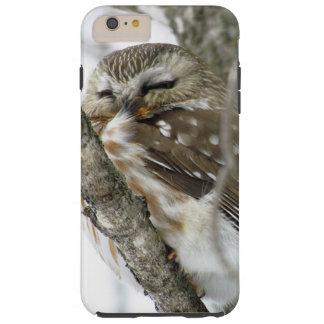 Snow Owl Tough iPhone 6 Plus Case