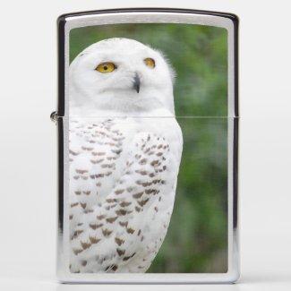 Snow owl...Zippo Pocket Lighter