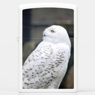 Snow owl...Zippo Pocket Lighter