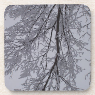 Snow pattern in the trees coaster