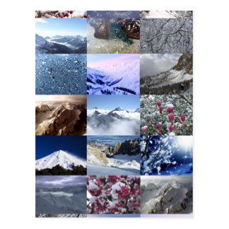 Snow Photo Collage Postcards