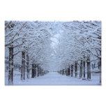 snow photo print