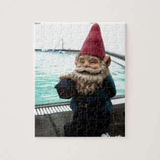 Snow Pool Gnome Puzzle