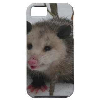 Snow Possum iPhone SE/5/5s Case
