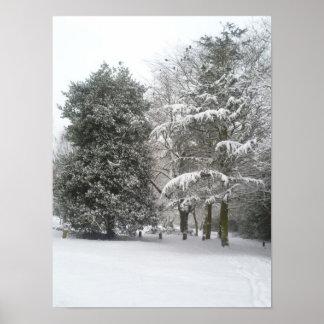 Snow - poster