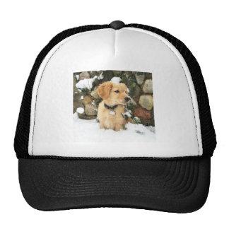 Snow Puppy Trucker Hat