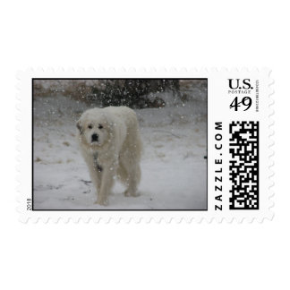 Snow Pyr Postage Stamps