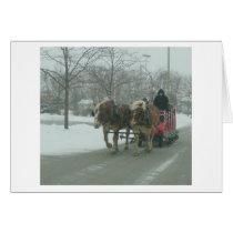 Snow Riders 2009 Card