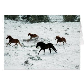 Snow Run Card